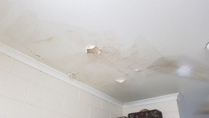 Rental property repairs